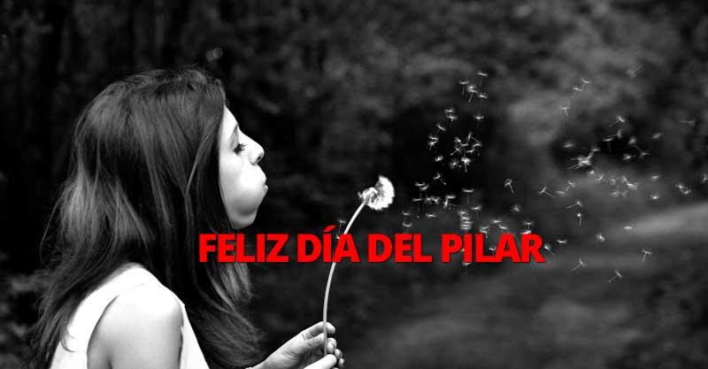 Feliz día del Pilar. Sofas Elche, Petrer, Elda